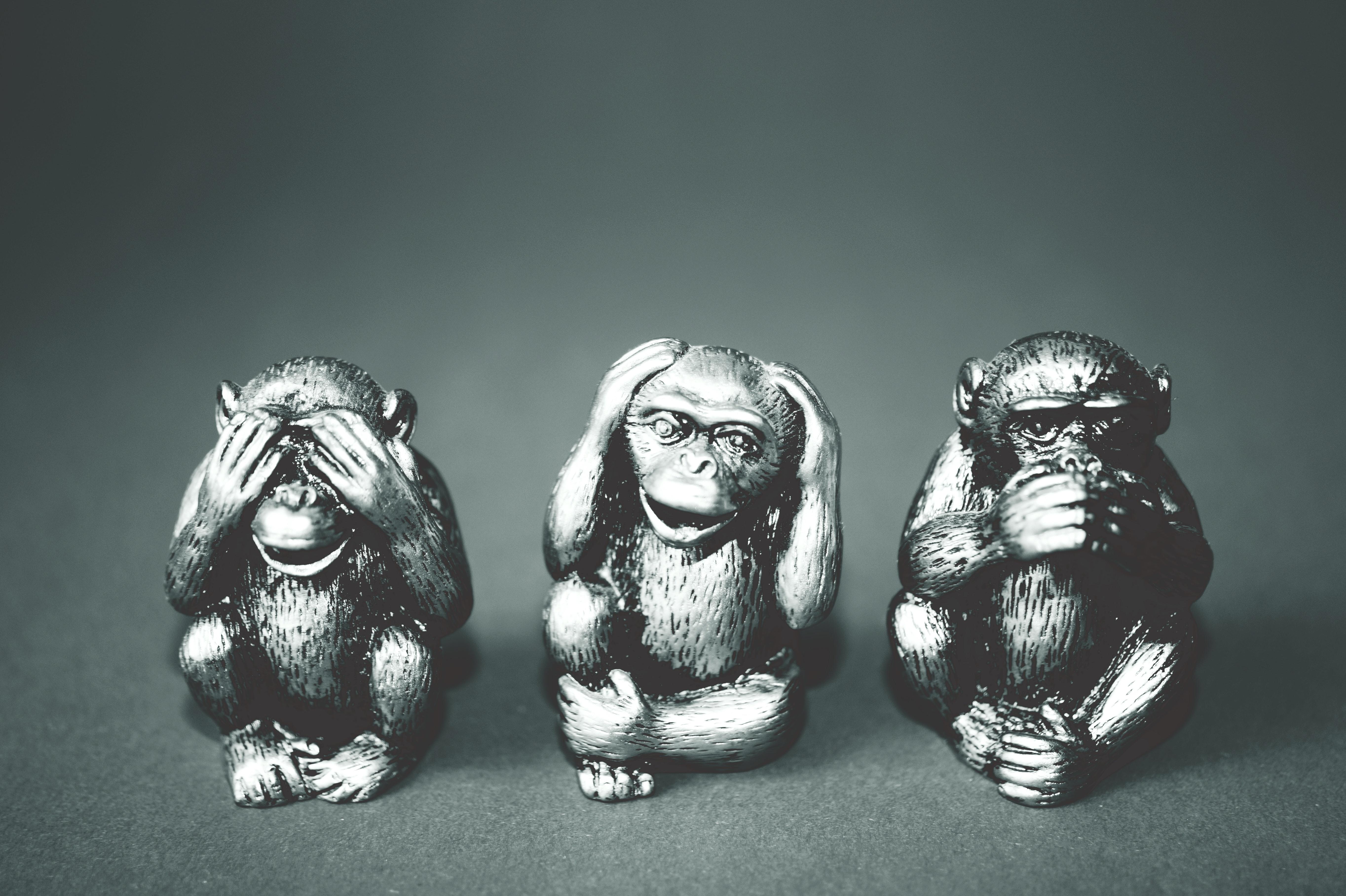 שלוש הטעויות הנפוצות בפרזנטציה – ואיך להמנע מהן